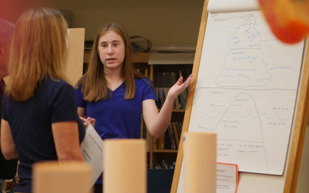 Learn Like a Willow 8th Grader: Systems Thinking