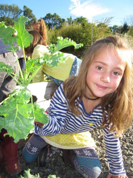 Kindergarten gardening