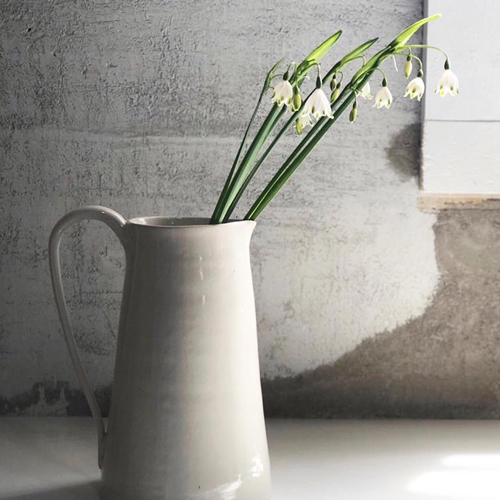 Petra Pitcher flowers_500x500