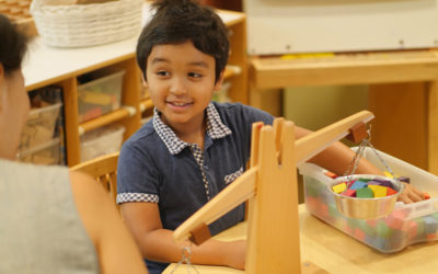Can Systems Thinking Be Taught in Kindergarten?